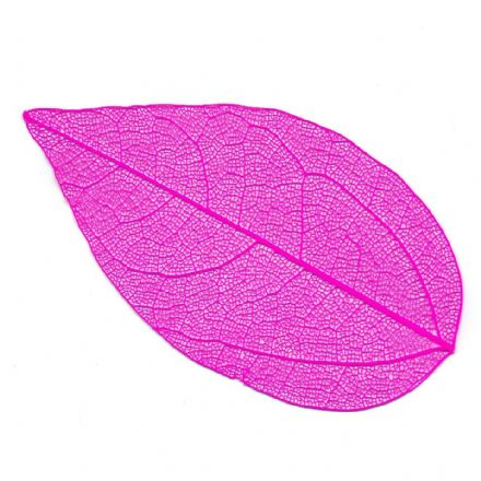 Skeleton Leaves Pink  4-6 cm, 10 pieces  (24105)